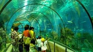 Миланский аквариум в павильоне