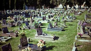 Остров-кладбище Сан-Микеле в Венеции
